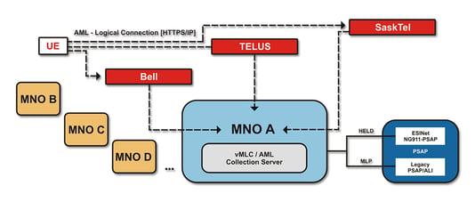 AML LC web